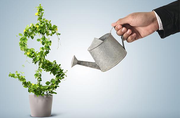 A importância de reinvestir no próprio negócio