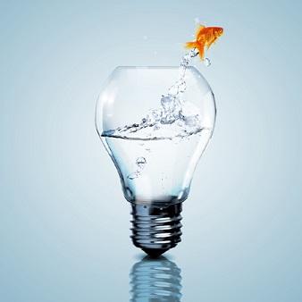 Ideias de negócios: como montar negócios de sucesso