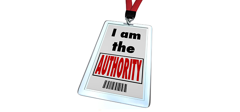 como construir autoridade online