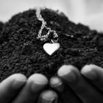 Relacionamento com o cliente | Ser um vendedor é coisa do passado (Em vez disso, pense como um fazendeiro)